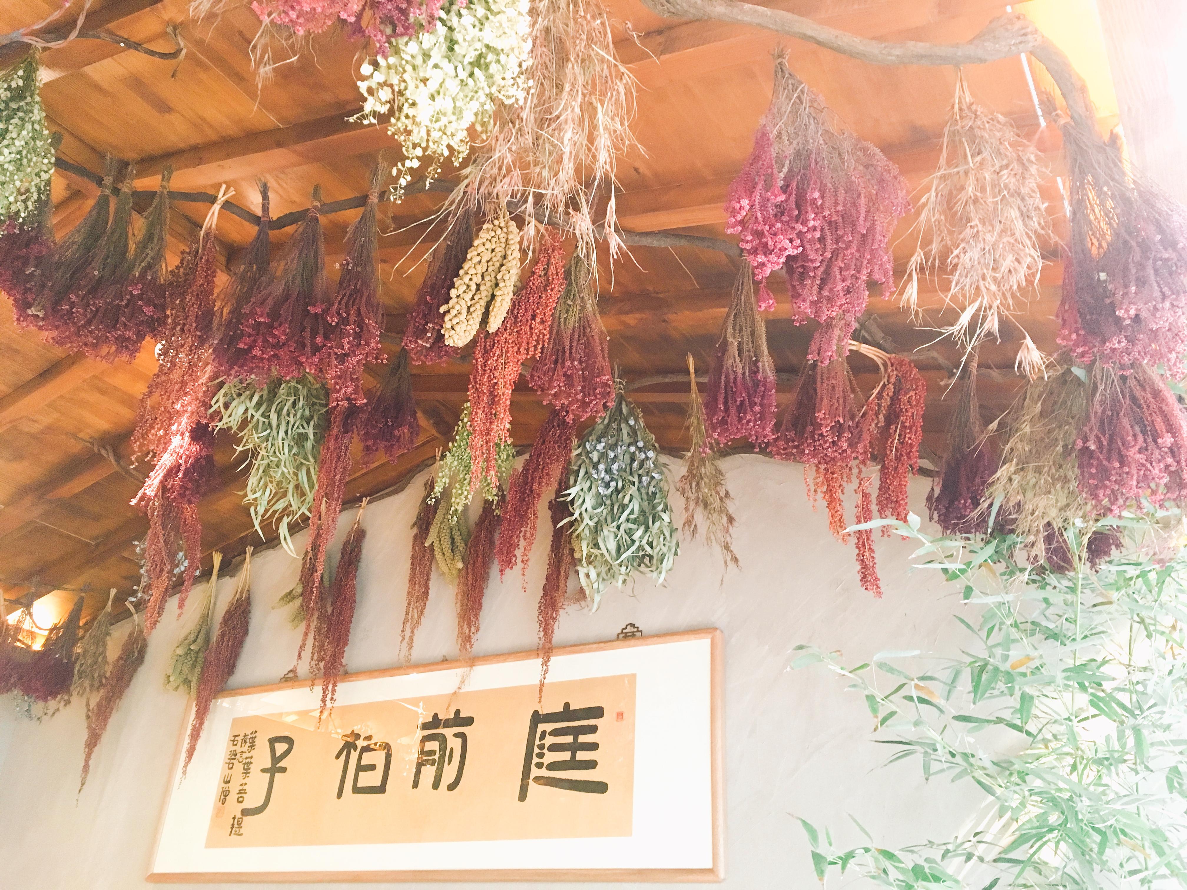 叶叶菩提花